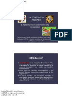 Paleontologia Aplicada 2