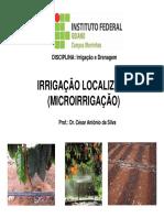 10 - Irrigação Localizada