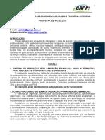 220113101012Projetos de Irriga o e Fertirriga o Proposta Consultoria GAPPI