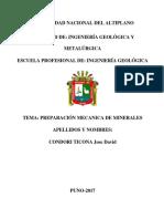 PREPARACIÓN MECANICA DE LOS MINERLES.docx