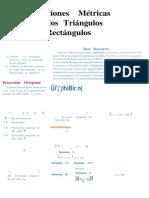 Guía 1-Relaciones Metricas en Los Triangulos Rectangulos