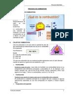 4. AVANC Proceso de Combustion