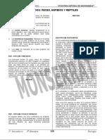 Cordados - Peces, Anfibioso y Reptiles.doc