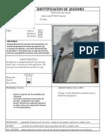 FICHA DE IDENTIFICACION DE LESIONES 2016 I (1).docx