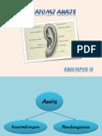 Anatomi Auris