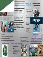 Aportes de La Ingenieria Industrial a La Salud (1)