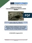TDR Taccata Umasi Primer Informe