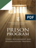 Prison Program Impact