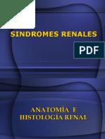 alteraciones-renales (2)