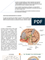 ansiedad fisiologia