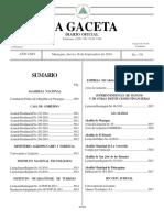 Gaceta No.176 Constitucion Politica de Nicaragua.pdf