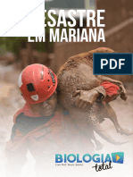 Desastre Mariana