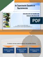 Introducción al Sistema Nervioso III.pdf