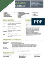 Curriculum Victor Ayala