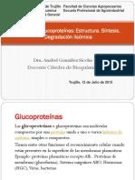T-19 Glicoproteinas.pptx