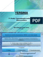 yersinia-100419152924-phpapp02.pdf