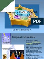 EvolucionCell Nuevo