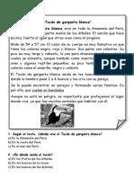 descripcic3b3n (1)