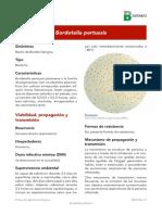 Bordetella pertussis.pdf
