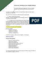 IMPORTANCIA DE LAS VITAMINAS. QUÍMICA
