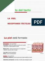 tacto_olfato_gusto.ppt