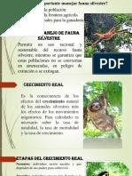 Fauna Silvestre Exponer