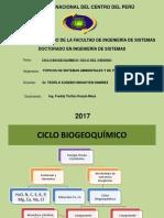 Ciclos-biogeoquímicos CICLO DEL OXIGENO