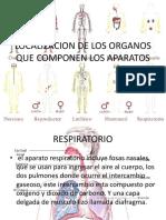 Anatomía Humana Expocicion