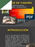Cerdos de Cabaña