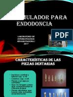Simulador Para Endodoncia 2017 (1)