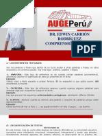 REFERENTES TEXTUALES .pdf