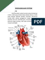 Cardiovaskular System