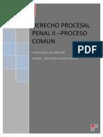 Trabajo de Investigacion d Proc Penal - Proceso Comun