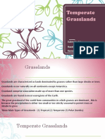 Hazel Temeprate Grasslands