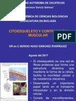 Biología Celular Citoesqueleto 2017