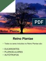 Reino Plantae Power Poin