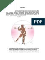 Anatomia Sistema Oseo