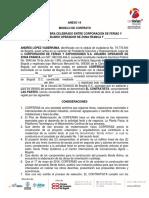 14 Anexo Modelo de Contrato