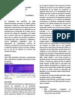 DNA Plasmidico Bq