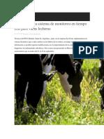 Argentina Crea Sistema de Monitoreo en Tiempo Real Para Vacas Lecheras