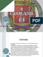 Defensa Integral Exposicion 26