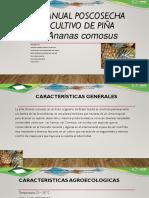 Manual Poscosecha Cultivo de Piña Ananas Comosus