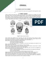 Craniul.doc