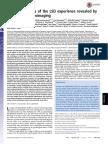 Neural correlates of the LSD experience revealed by multimodal neuroimaging