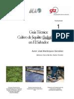 VOL 1-Guía Técnica_Cultivo de Jiquilite (Indigofera Spp) en El Salvador