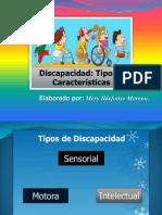 Tipos de Discapacidad FINAL
