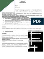 TP SISTEMA ENDOCRINO.docx