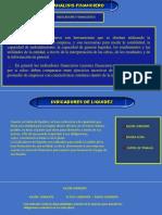 INDICADORES FINANCIEROS1