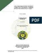 PCU FO AMPLAS.pdf
