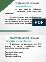 Comportamento humano no trabalho motivação, satisfação e comprometimento - Parte IV.pdf